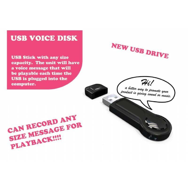 Usb stick met een auditieve of webkey boodschap