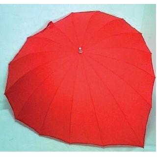 Paraplu hart